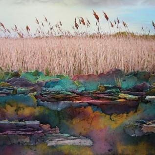 Patricia Littlefield