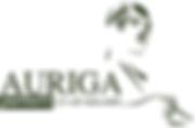 auriga-partners_owler_20160227_145023_or