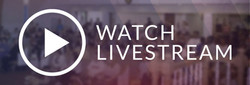 Live Stream Services
