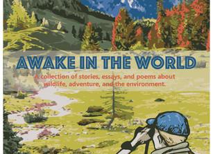 Now Open! AWAKE IN THE WORLD, V.2
