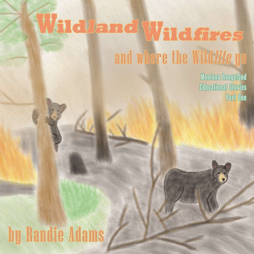Wildland Wildfires, and where the wildlife go.