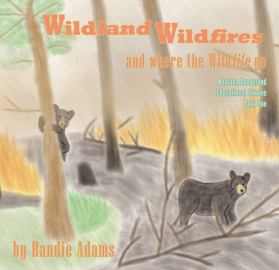 Wildland Wildfires, and where the wildlife go.