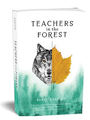 Teachers in the Forest, Barry Babcock, wolf picture