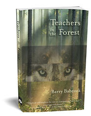 Teachers in the Forest, Barry Babcock