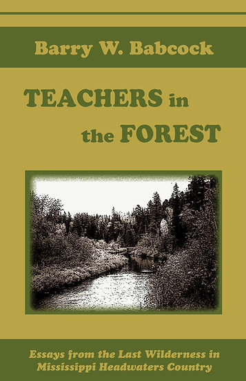 Teachers in the Forest