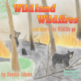 Wildlands Wildfires
