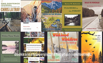 Riverfeet Press Books