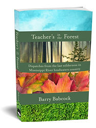 Teacher's in the forest, barry babcock