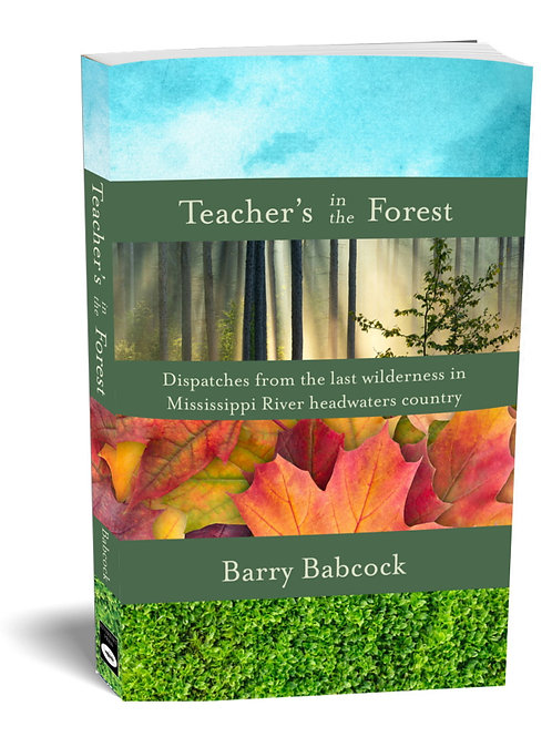 TEACHER'S IN THE FOREST - 2nd Edition