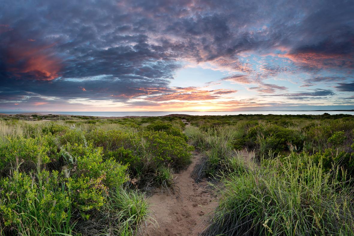 Cooke Point Sunrise