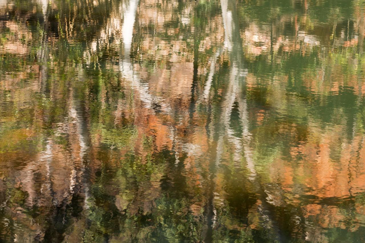 140904-147 Waterhole Reflections