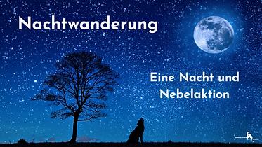 Nachtwanderung Veranstaltung FB.png