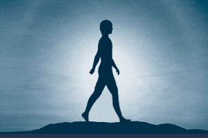 Neuromuscular therapy (NMT)  the corner stone at Sol Bodyworks