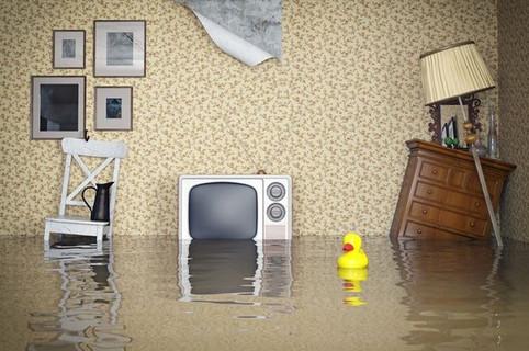 Полезные советы при страховании квартиры
