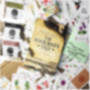 A Shakespearean Mystery February Ninja Book Box