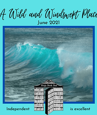 'A Wild and Windswept Place' June Mini Box