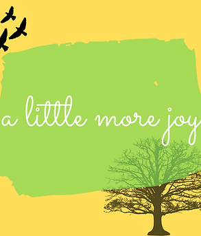 'A Little More Joy' December Ninja Book Box