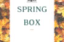 Spring Box (2).png