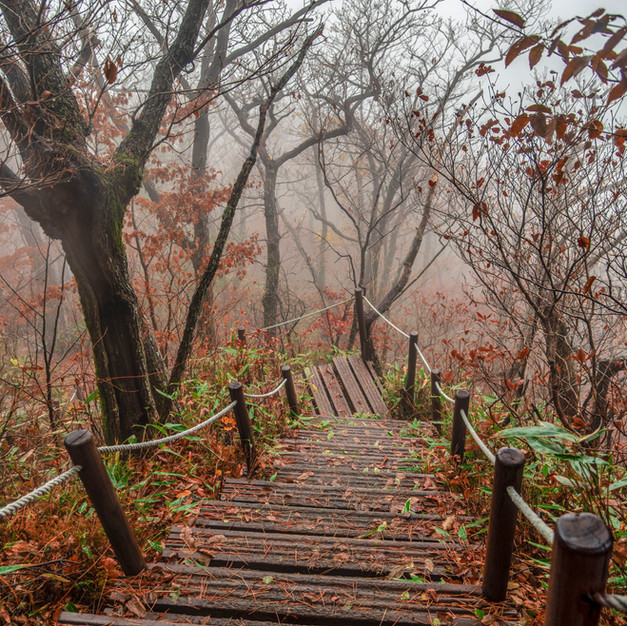 Foggy Jirisan descent