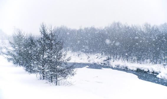 Snow in Biei