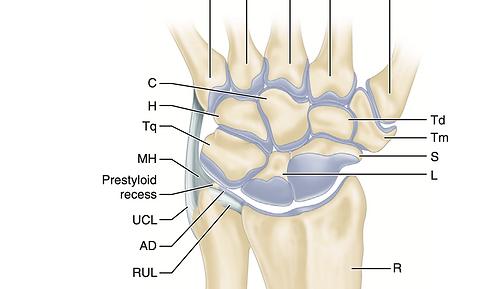 Переломы костей кисти