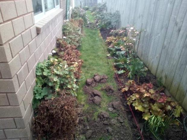 Landscaping Upgrade