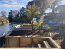 Retaining and Landscaping