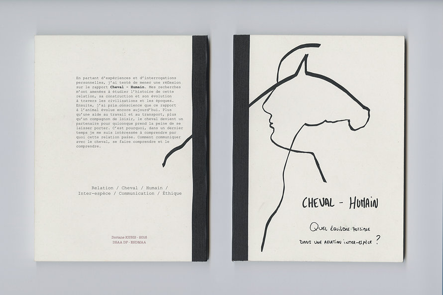 Mémoire de synthèse sur la relation Cheval-Humain
