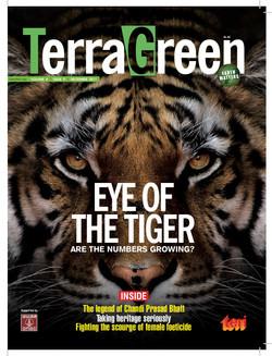 Terra Green Cover