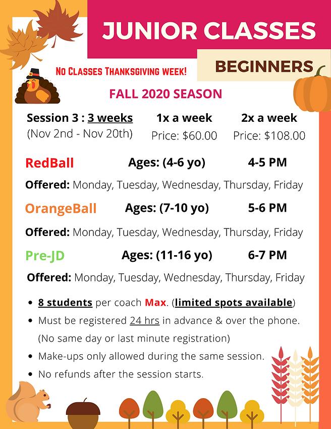 2020 Junior Beginners Nov.png