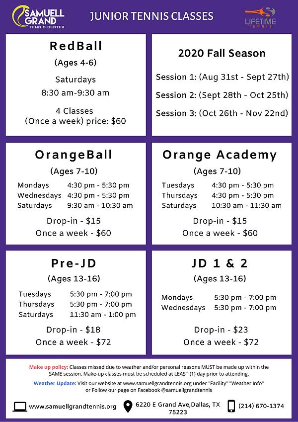 Junior Tennis Classes (1).png