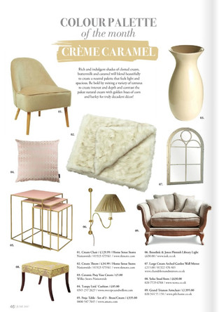 Creme Caramel , Colour palettes of the month