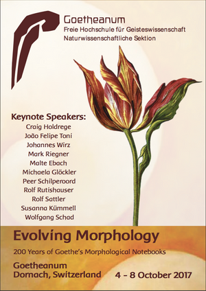 Evolving Morphology Conference 2017