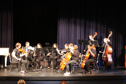 vpa - orch pic