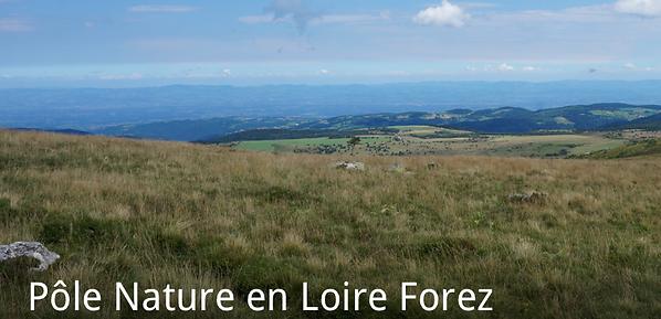 LOIRE FOREZ POLE NATURE.png