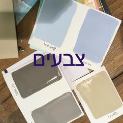 בחירת צבעים בתהליך שיפוץ דירה קומפלט | מרב שדה - תכנון ועיצוב פנים