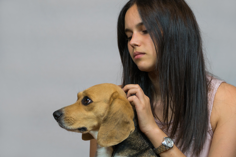 Fotografía estudio mascotas madrid
