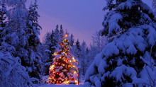 CHRISTMAS SEASON IS HERE