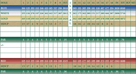 Llyndinshire Scorecard