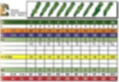Bubba Watson Score Card Front 9.jpg