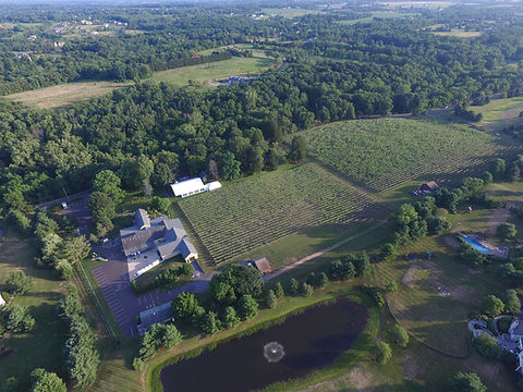 Crossing Vineyards aerial view
