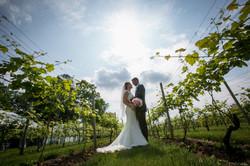 bride and groom in vineyard row