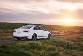 RacingLine Sport Springs Audi S4 B9
