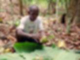 cocoa5.jpg