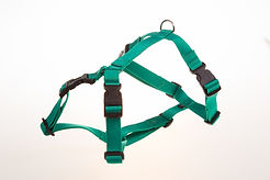 Calming Signs harness green