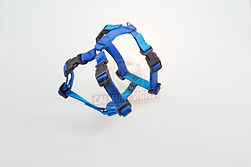 Calming Signs harness blue