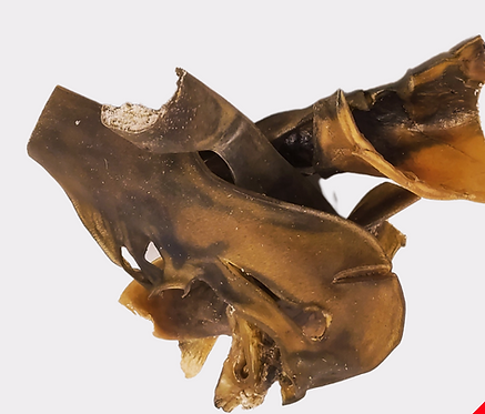 Camel skin chews (approx 15cm)