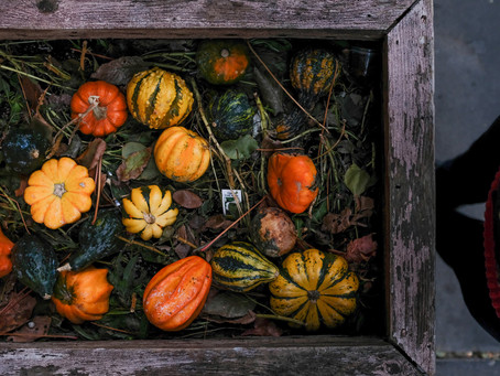 Pumpkins and me