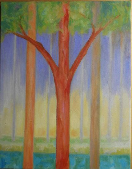 Orange tree in forest