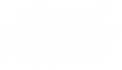 Irona Rally Logo Weiss.png